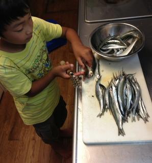 0922魚捌きヒロ�B.JPG